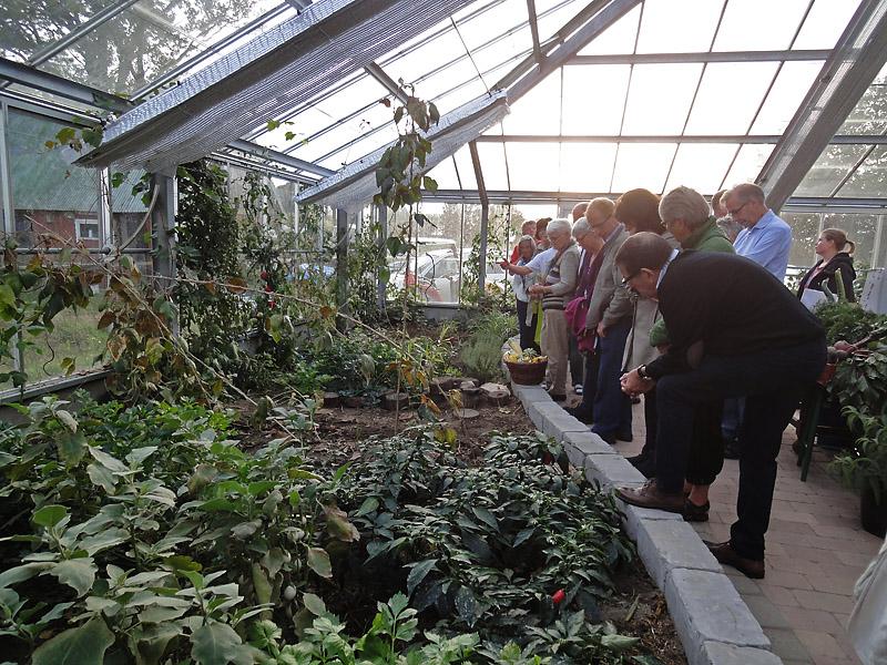 Växtligheten beundras av besökarna